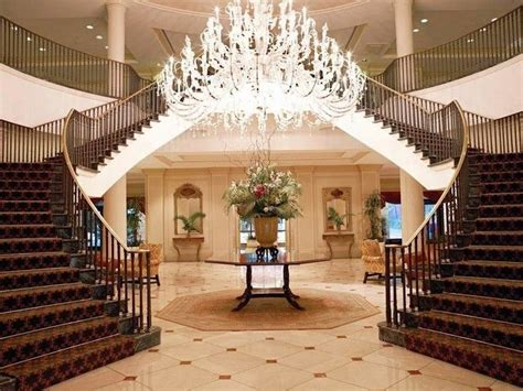 friendly hotels charleston sc 38 best images about hotels on dubai dubai