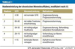 niereninsuffizienz ernährung tabelle niereninsuffizienz stadien kreatinin