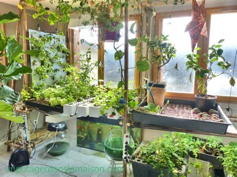 Aquaponic Vegetable Garden 26 Best Aquaponie Images On Gardening