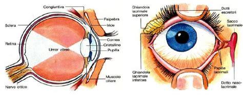 dolore interno occhio trucco grunge palpebra cadente e non