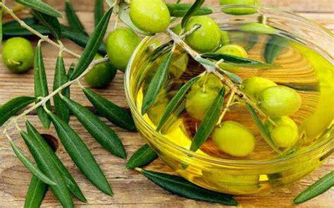 Minyak Zaitun Untuk Bibir cara awet muda dengan minyak zaitun