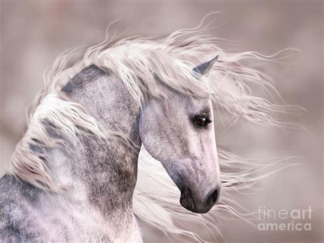 Dappled Grey Horse Head Profile Digital Art By Elle Arden