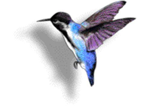 aqu las ms hermosas imgenes de gifs de flores con frases colibr 237 s im 225 genes animadas gifs y animaciones 161 100 gratis