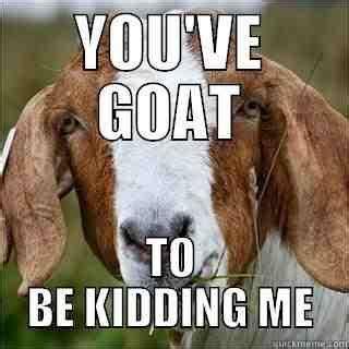 Are You Kidding Me Meme - you ve goat to be kidding me goat memes picsmine