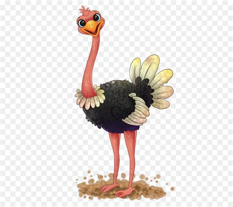 ostrich clipart common ostrich free content clip ostrich cliparts
