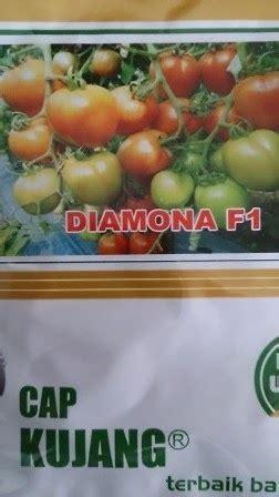 Benih Tomat Hibrida New Mutiara F1 toko pertanian petani indonesia lmga agro benih tomat