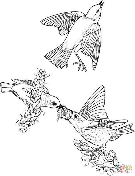 realistic eagle coloring pages eagle coloring pages bird animals 14 bird coloring pages