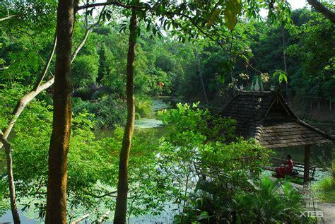 Xishuangbanna Tropical Botanical Garden Picture 10 Xishuangbanna Tropical Botanical Garden Cas