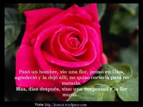 imagenes de tu eres mi amor eterno amor eterno la flor de mi jardin youtube