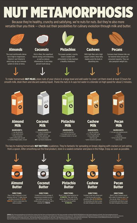 healthy fats besides nuts nuts to eat for better health infographics