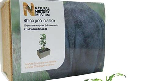 poo a natural history 1406356638 natural history museum suggests rhino poo as christmas gift dailytelegraph com au
