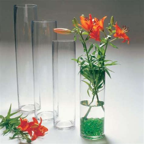 Vase Rentals For Weddings cylinder vase rentals vases sale