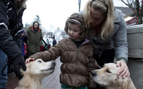 comfort dogs helping ease of hook tragedy ny