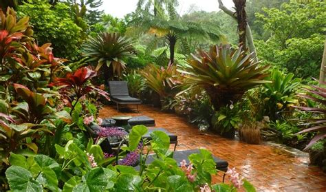 Small Tropical Garden Ideas Small Tropical Garden Ideas Webzine Co