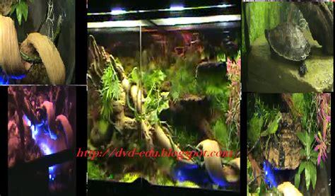 Tanaman Sintetik Plastik Dekorasi Aquarium Tanaman 8 terarium