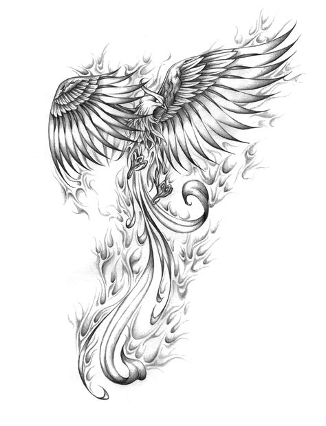 black and grey phoenix tattoo designs design artwork custom design wzory