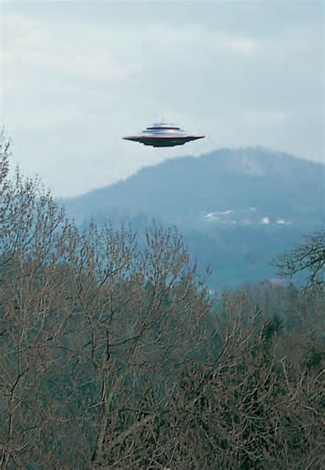 Fake Tree by Nasa Engineer The Billy Meier Ufo Case Is Real