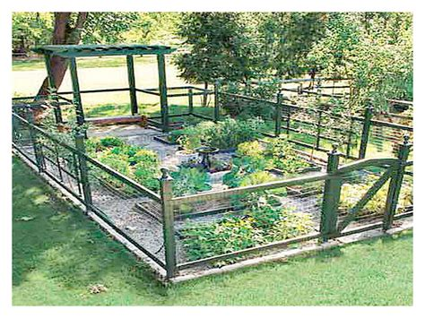 vegetable garden layout designs talentneeds