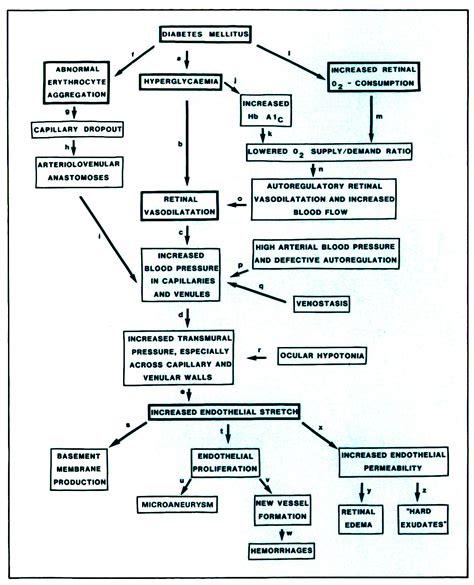 diabetes mellitus pathophysiology flowchart diabetes mellitus pathophysiology flowchart create a