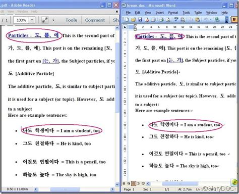 convert pdf to word support arabic is your pdf to word converter support korea characters