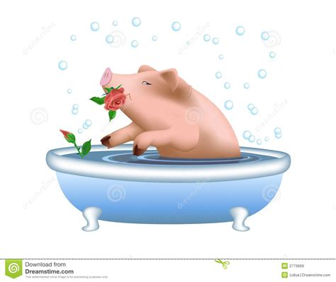 pig in bathtub pig taking bath royalty free stock images image 2779669