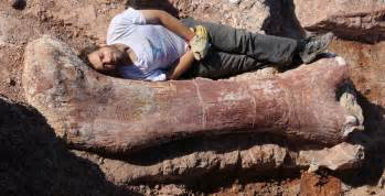 biggest dinosaur ever discovered bbc news