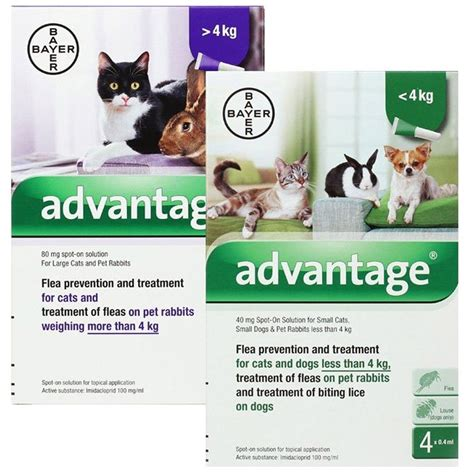 flea medicine for puppies advantage flea treatment at the lowest prices around vet medic