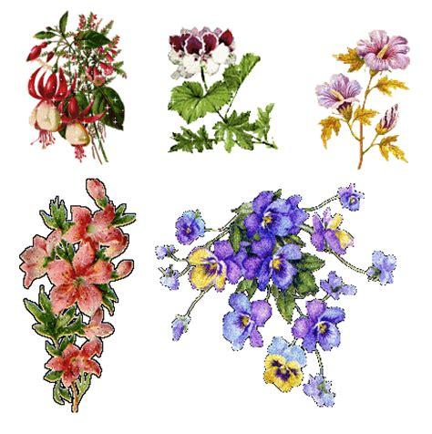 gif fiori vintage fiori e accessori gif e