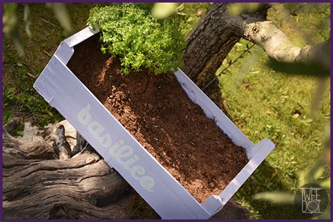 orto in giardino come fare casa immobiliare accessori come fare un orto in giardino