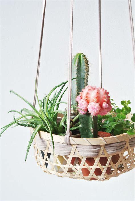 top  ideas  display indoor plants  stylish indoor plants