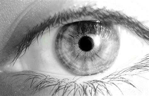 imagenes diabolicas a blanco y negro h d blanco y negro simplemente exelente hd im 225 genes