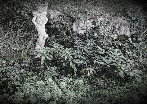 sassi per giardino roccioso sassi giardino roccioso immagini di walter giardini