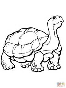 tortoise coloring page free printable coloring pages