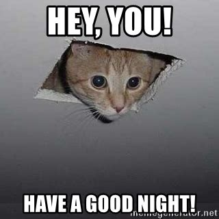Have A Good Night Meme - hey you have a good night ceiling cat meme generator
