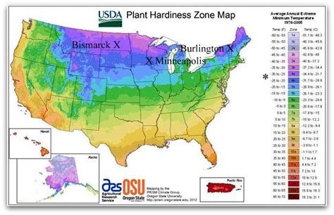 alberta gardening zones zone four usda plant hardiness world view