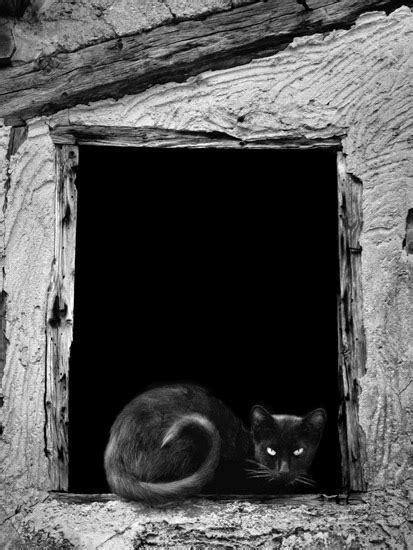 Demare Fotografia: Fotografias en blanco y negro