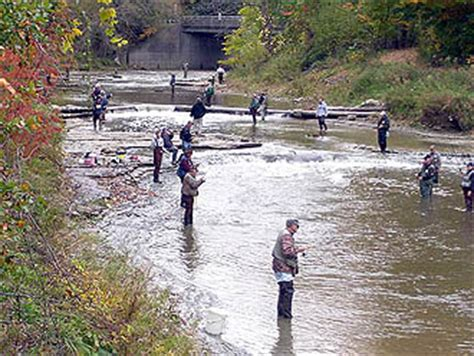 pa fish and boat commission erie pa swpa trout project bringing trophy trout to greene county