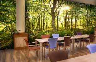 care home wall murals amp nursing home wallpaper wallsauce usa forest wall murals for a serene home decor adorable home