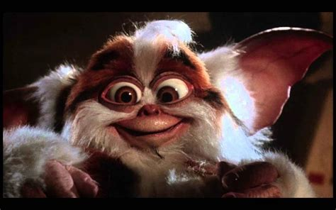 The Gremlins i not gizmo daffy mogwai from gremlins 2 how to be a