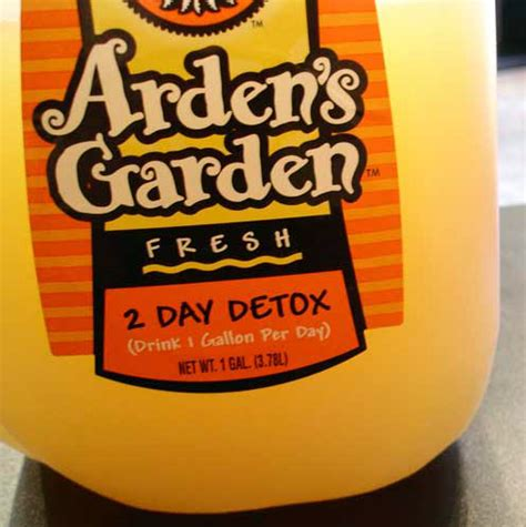 Arden S Garden Detox Recipe by The 48hr Cleanse The Whinery By Elsa Brobbey