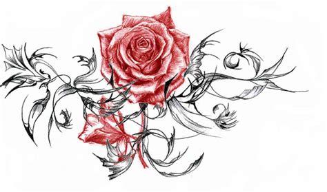 rose design 2 by darkvixen 28 on deviantart