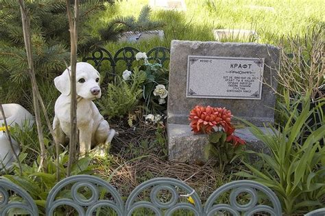 cementerio de animales 8401498813 donde enterrar a tu mascota 187 mascotas en el cielo