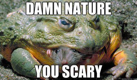 Damn Nature You Scary Meme - damn nature you scary meme
