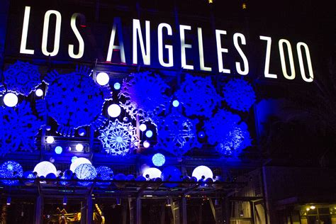 Zoo Light by La Zoo Lights Pays Tribute To City S History Animal