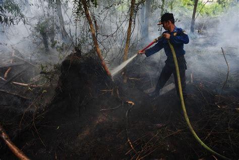 Bor Gambut brg targetkan bangun ribuan sumur bor di lahan gambut