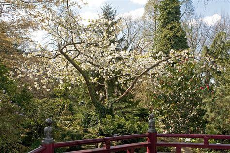 Garten Kaufen Nrw by Japanischer Garten Leverkusen Iii Foto Bild