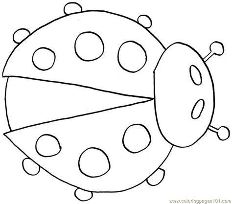 coloring pages ladybug insects gt ladybugs free