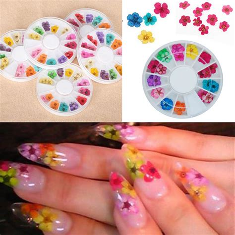 Nail Decorations by 36pcs Real Nail Dried Flowers Nail Decoration Diy Tips