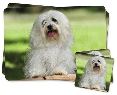 havanese gifts havanese 2x placemats 2x coasters set in gift box id 29777