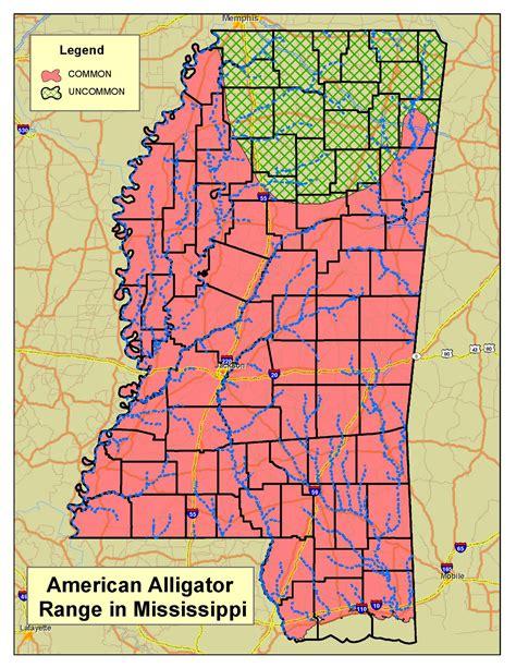 alligators in map alligator program
